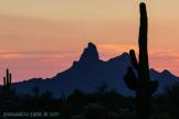 Richard Legere | Picacho Peak