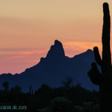 Richard Legere‎ | Picacho Peak