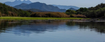 Robin Newman O'Donnell | Lower Salt River