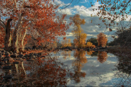 Ron Pelton Jr   Dry Beaver Creek