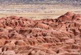 Ron Pelton Jr | Painted Desert