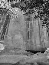 Serena Rose | Canyon de Chelly