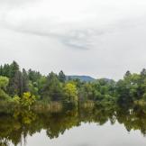 Shauna Evans | Friendly Pines Camp