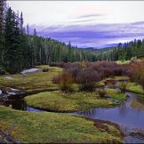 Alan Lucio   White Mountains