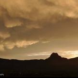 Dawn Hoehn Hagler   Tucson