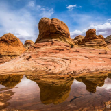 Don Lawrence‎ | Coyote Butte