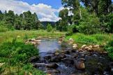 Jerry Clifton | Canyon Creek