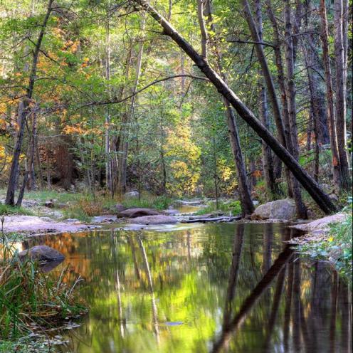 John Morey Photography   Horton Creek
