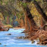 John Morey Photography   Natural Fine Art Photographics & More   Havasu Creek