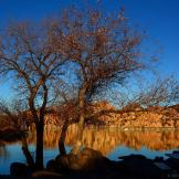 Nancy Maurer   Watson Lake