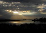 Pam Barnhart | Roper Lake SP