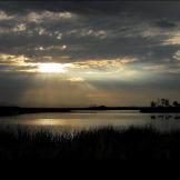 Pam Barnhart   Roper Lake SP