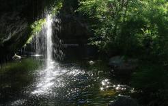 Pam Barnhart   West Clear Creek