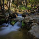 Randy Gibson   Horton Creek