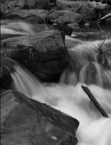 Robin Newman O'Donnell | Oak Creek