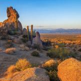 Bob Miller | McDowell Mountain Preserve