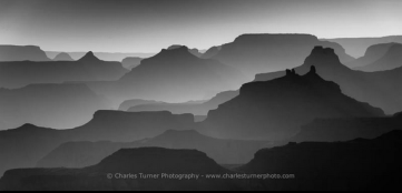Charles Turner | GC