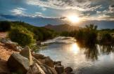 Fred Larson | Salt River