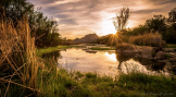Gerry Groeber | Lower Salt River