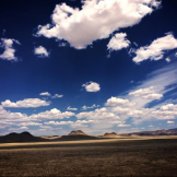Kasie Morgan | Chino Valley