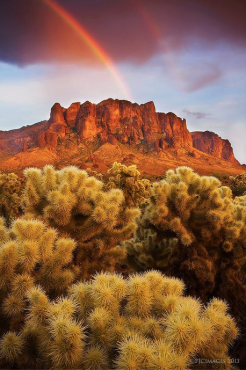 Peter James Nature Photography | Superstition Mnts