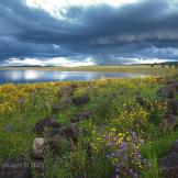 Tom Corey | Sunrise Lake