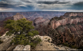 Western Images and Light‎ | North Rim