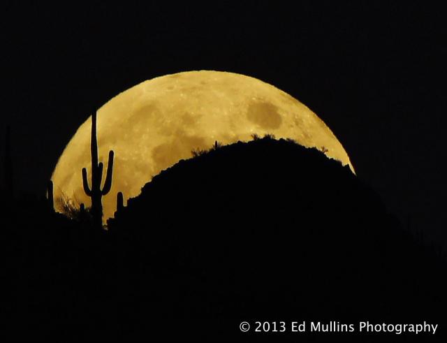 Ed Mullins | Tucson