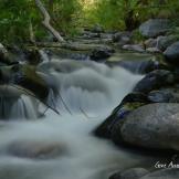 Gene Ames | Oak Creek Canyon