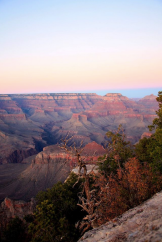 Jacque Alameddine‎ | Grand Canyon