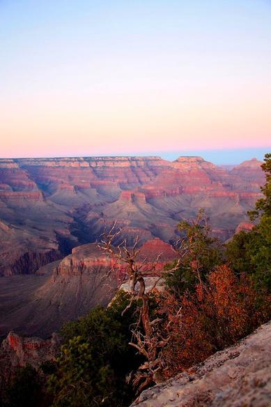 Jacque Alameddine   Grand Canyon