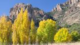 Keith Zimmerman | Cave Creek Canyon