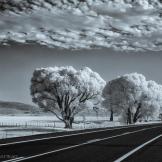 Keith Zimmerman | Near Yarnell