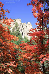 Shannon Hastings‎ | Oak Creek Canyon