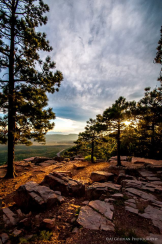 April Hudson Goldian | Mogollon Rim
