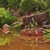 Dave Anderson | Carrizo Creek