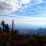 Diane Ingram | Mount Lemmon