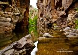 DJ Cordero Photography   West Clear Creek Wilderness