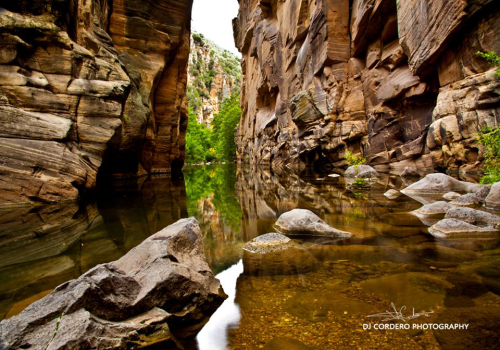 DJ Cordero Photography | West Clear Creek Wilderness