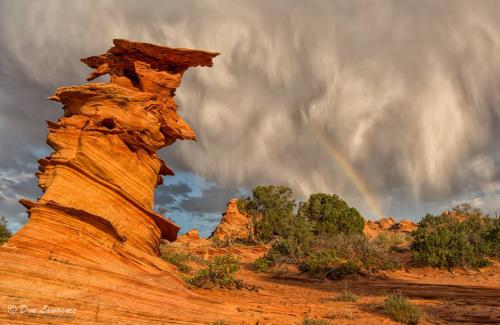 Don Lawrence | Paria Canyon-Vermilion Cliffs Wilderness