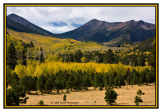 Ed Taube | Lockett Meadow