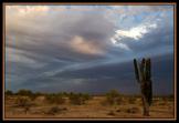 Ed Taube | North Phoenix