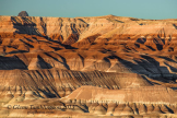 Glenn Tamblingson | Little Painted Desert