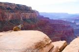 Hayley Susan Photography | Grand Canyon
