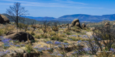 Karen Martin   Granite Mountain Wilderness