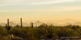 Lacy Kruger Photography   North Scottsdale