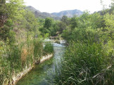 Michael Murdaugh | Fossil Springs Wilderness