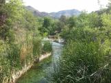 Michael Murdaugh   Fossil Springs Wilderness