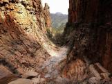 Pam Barnhart   Sierra Ancha Wilderness