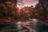 Peter James Nature Photography   Grand Canyon